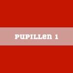 Teampagina Pupillen 1